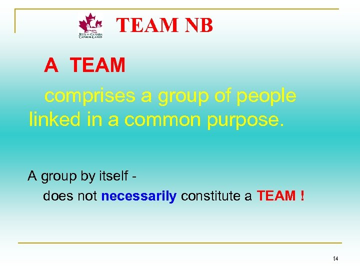 TEAM NB A TEAM comprises a group of people linked in a common purpose.