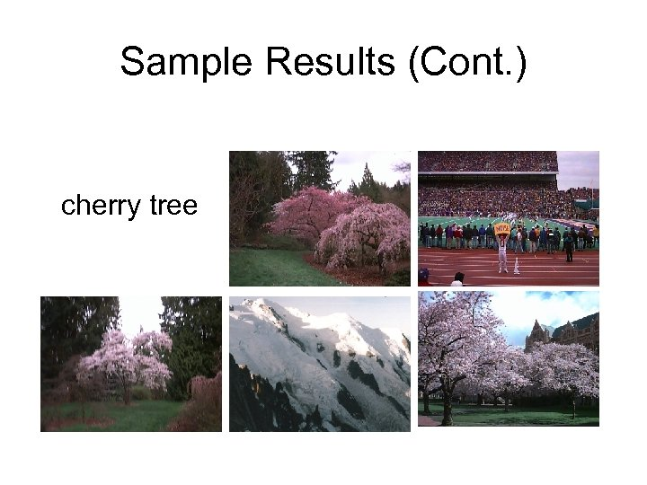 Sample Results (Cont. ) cherry tree