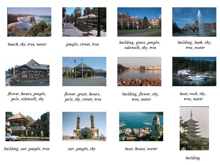 beach, sky, tree, water people, street, tree building, grass, people, sidewalk, sky, tree flower,