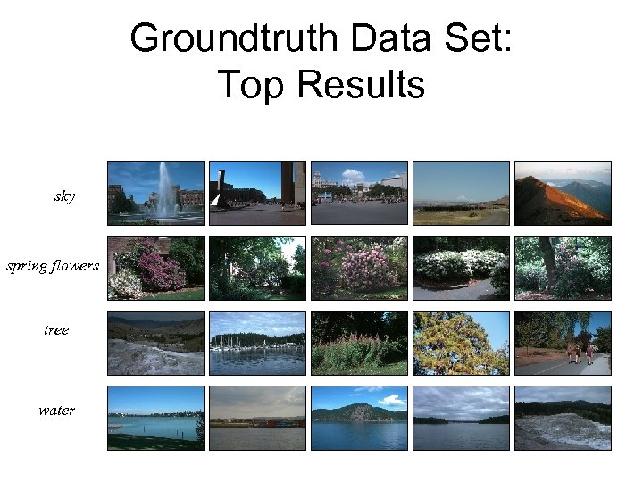 Groundtruth Data Set: Top Results sky spring flowers tree water