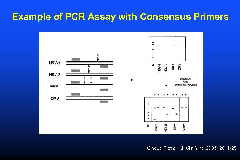 Example of PCR Assay with Consensus Primers Cinque P et al. J Clin Virol