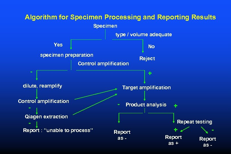 Algorithm for Specimen Processing and Reporting Results Specimen type / volume adequate Yes No
