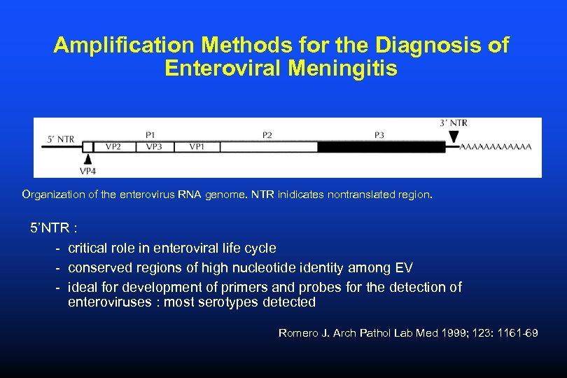 Amplification Methods for the Diagnosis of Enteroviral Meningitis Organization of the enterovirus RNA genome.