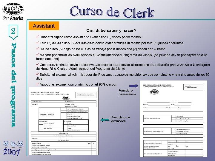 2 Assistant Que debo saber y hacer? ü Haber trabajado como Assistant o Clerk