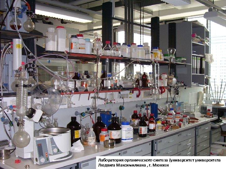 Лаборатория органического синтеза (университета Людвига Максимилиана , г. Мюнхен