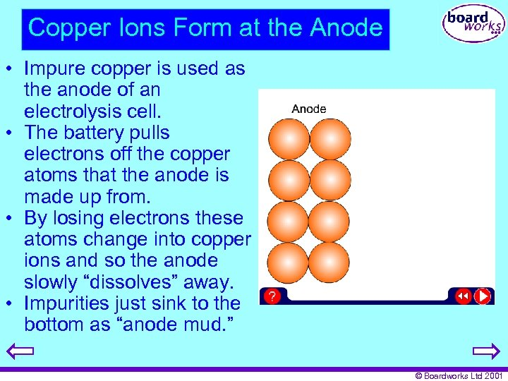 Copper Ions Form at the Anode • Impure copper is used as the anode