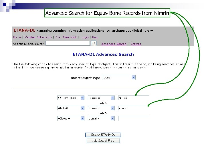 Advanced Search for Equus Bone Records from Nimrin