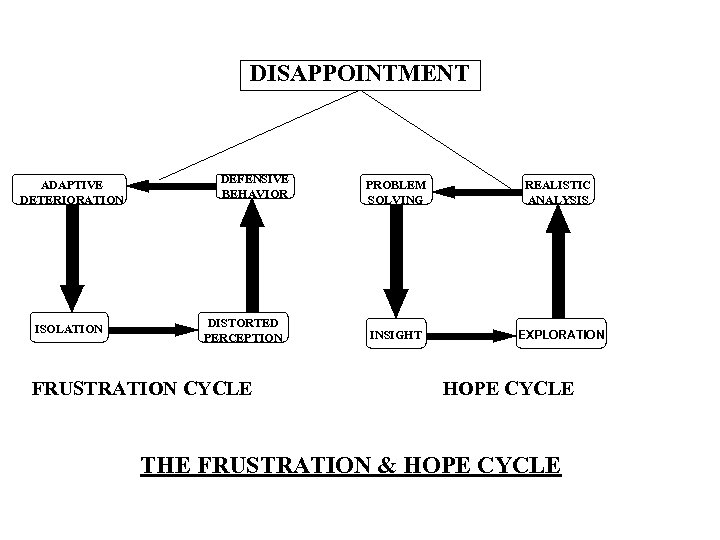 DISAPPOINTMENT ADAPTIVE DETERIORATION ISOLATION DEFENSIVE BEHAVIOR DISTORTED PERCEPTION FRUSTRATION CYCLE PROBLEM SOLVING REALISTIC ANALYSIS