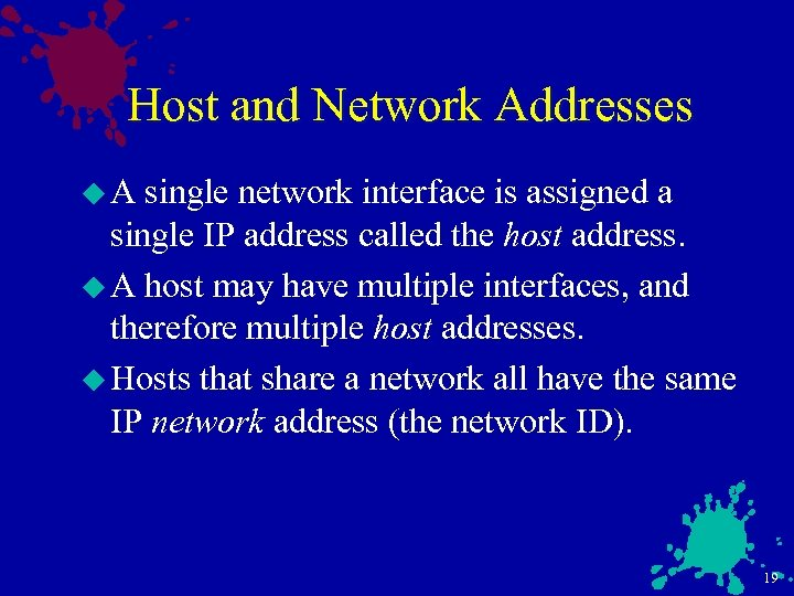 Host and Network Addresses u. A single network interface is assigned a single IP