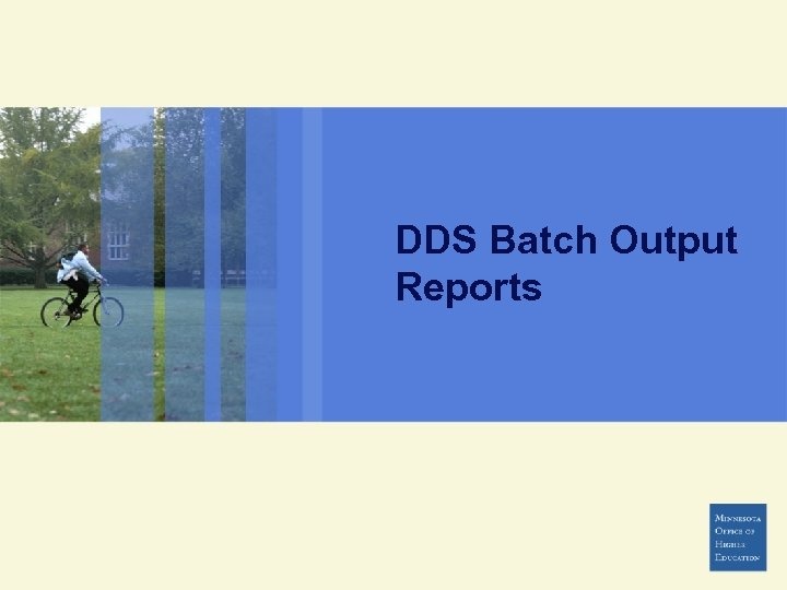 DDS Batch Output Reports