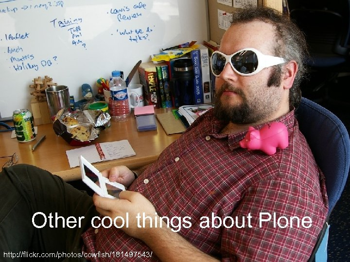 Other cool things about Plone http: //flickr. com/photos/cowfish/181497543/