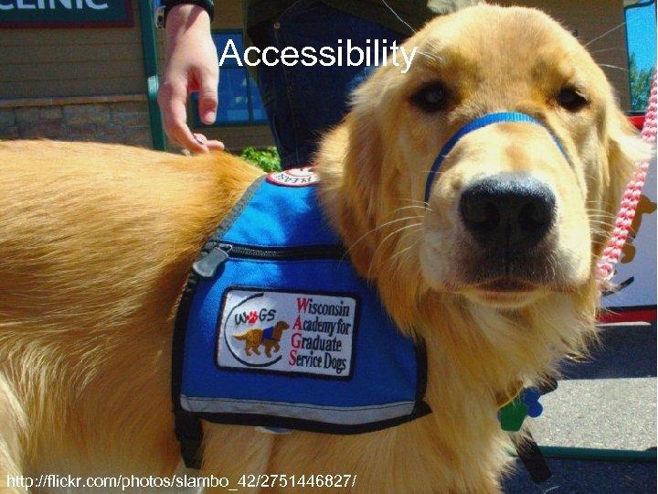 Accessibility http: //flickr. com/photos/slambo_42/2751446827/