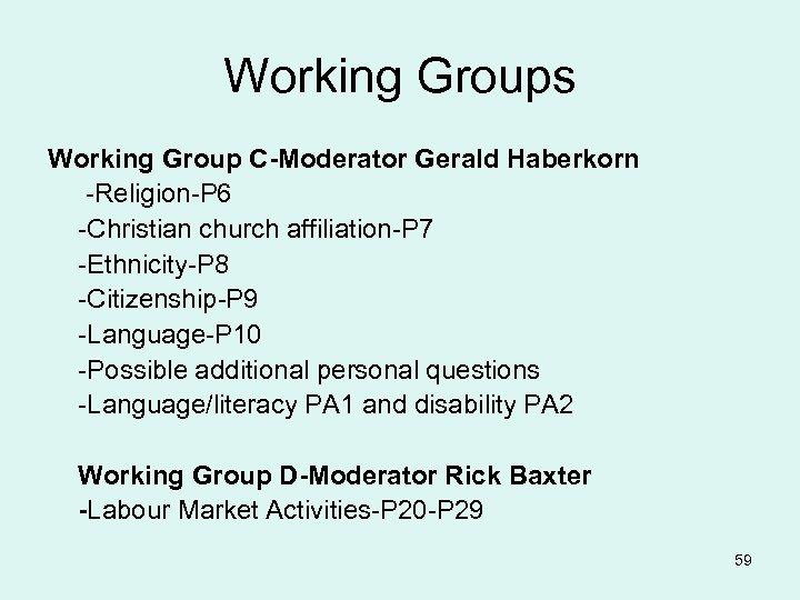 Working Groups Working Group C-Moderator Gerald Haberkorn -Religion-P 6 -Christian church affiliation-P 7 -Ethnicity-P