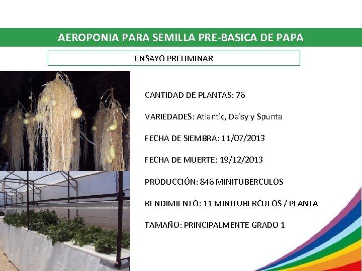 AEROPONIA PARA SEMILLA PRE-BASICA DE PAPA ENSAYO PRELIMINAR CANTIDAD DE PLANTAS: 76 VARIEDADES: Atlantic,