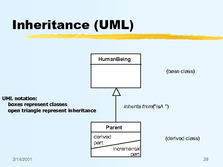 Inheritance (UML) Human. Being (base class) UML notation: boxes represent classes open triangle represent