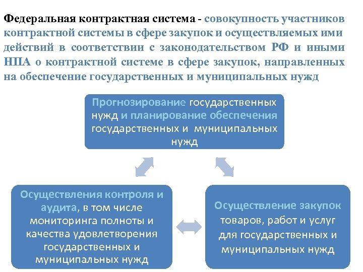 Федеральная контрактная система - совокупность участников контрактной системы в сфере закупок и осуществляемых ими