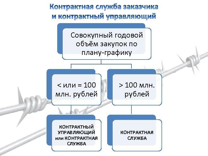 Совокупный годовой объём закупок по плану-графику < или = 100 млн. рублей > 100