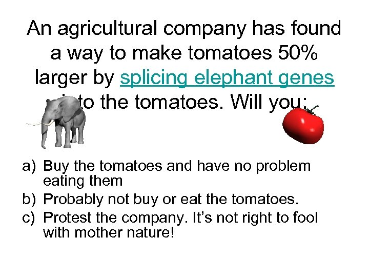 An agricultural company has found a way to make tomatoes 50% larger by splicing