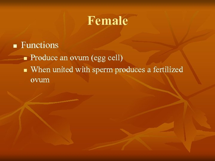 Female n Functions n n Produce an ovum (egg cell) When united with sperm