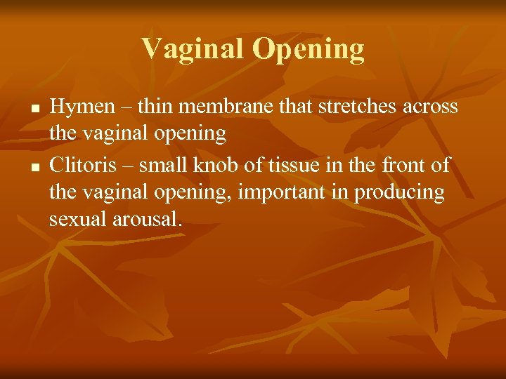 Vaginal Opening n n Hymen – thin membrane that stretches across the vaginal opening
