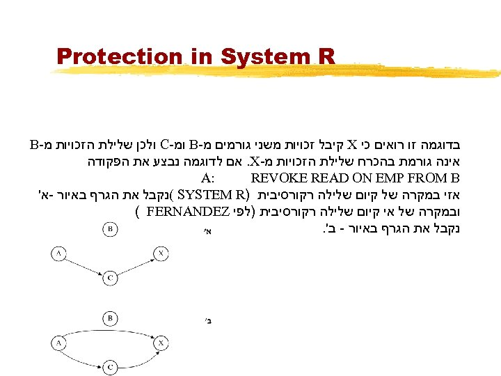 Protection in System R בדוגמה זו רואים כי X קיבל זכויות משני גורמים