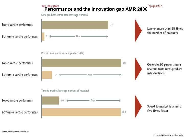 Performance and the innovation gap AMR 2008