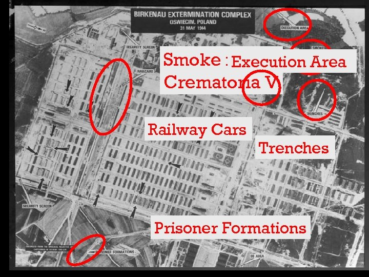 Smoke from Execution Area Crematoria V Railway Cars Trenches Prisoner Formations