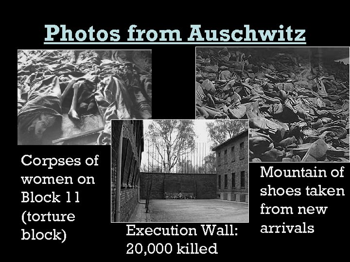 Photos from Auschwitz Corpses of women on Block 11 (torture block) Execution Wall: 20,