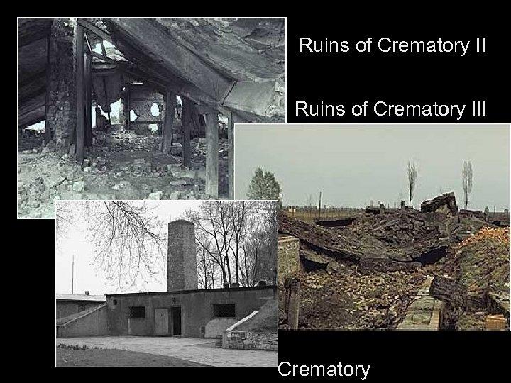 Ruins of Crematory III Crematory