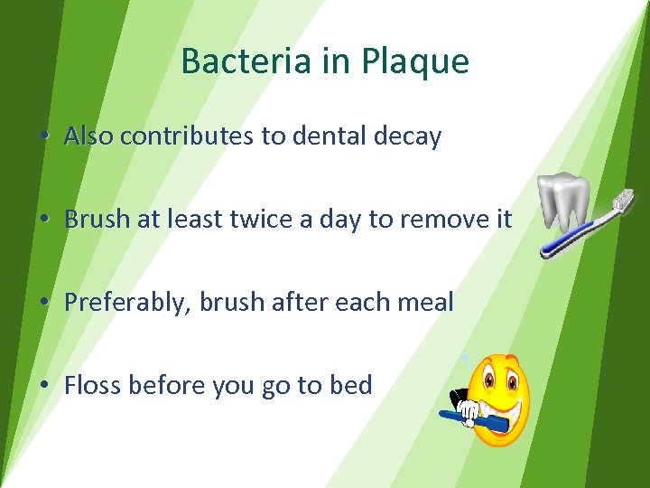 Bacteria in Plaque • Also contributes to dental decay • Brush at least twice