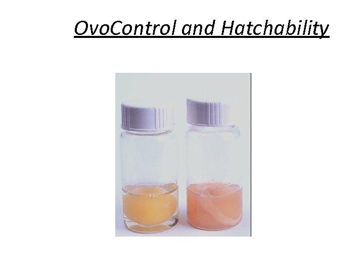 Ovo. Control and Hatchability