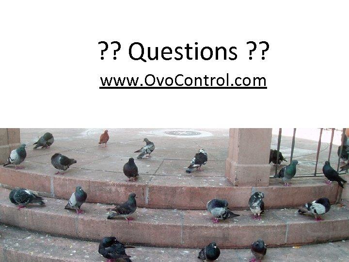 ? ? Questions ? ? www. Ovo. Control. com