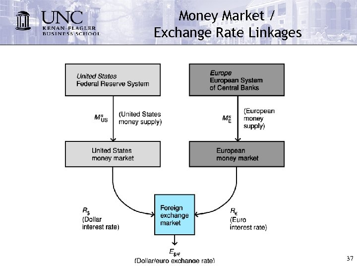 Money Market / Exchange Rate Linkages 37