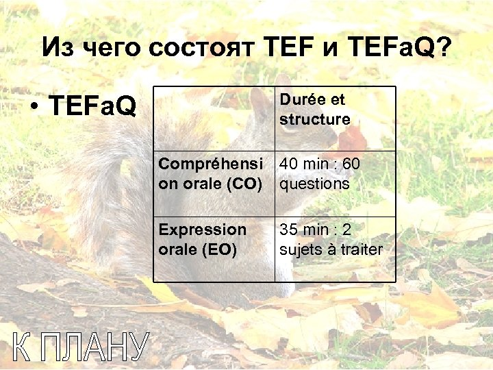 Из чего состоят TEF и TEFa. Q? Durée et structure • TEFa. Q Compréhensi