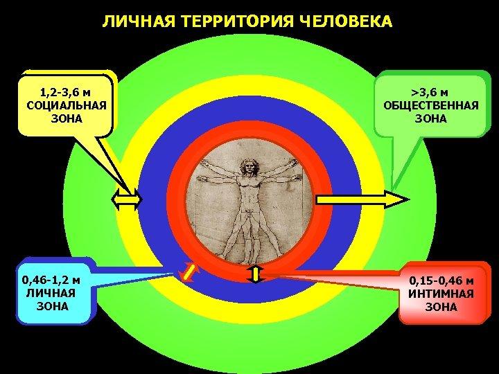 ЛИЧНАЯ ТЕРРИТОРИЯ ЧЕЛОВЕКА 1, 2 -3, 6 м СОЦИАЛЬНАЯ ЗОНА 0, 46 -1, 2