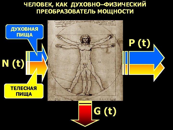 ЧЕЛОВЕК, КАК ДУХОВНО–ФИЗИЧЕСКИЙ ПРЕОБРАЗОВАТЕЛЬ МОЩНОСТИ ДУХОВНАЯ ПИЩА P (t) N (t) ТЕЛЕСНАЯ ПИЩА G