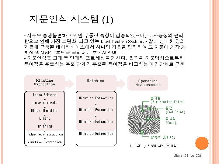 지문인식 시스템 (1) • 지문은 종생불변하고 만인 부동한 특성이 검증되었으며, 그 사용상의 편리 함으로
