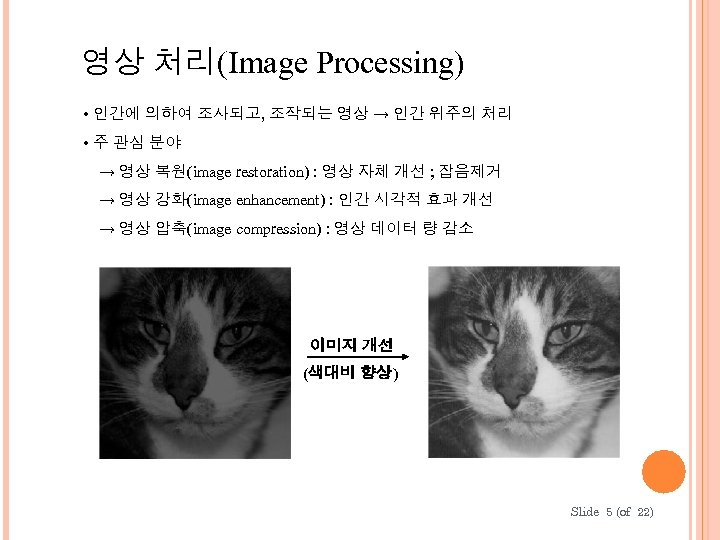 영상 처리(Image Processing) • 인간에 의하여 조사되고, 조작되는 영상 → 인간 위주의 처리 •