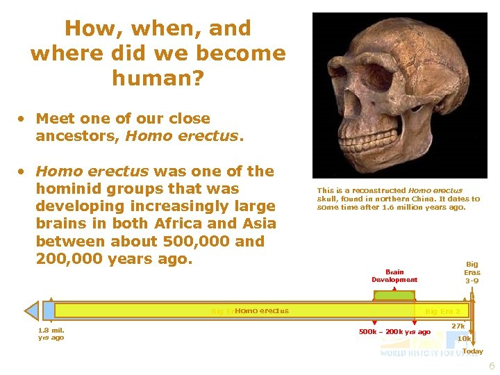 How, when, and where did we become human? • Meet one of our close
