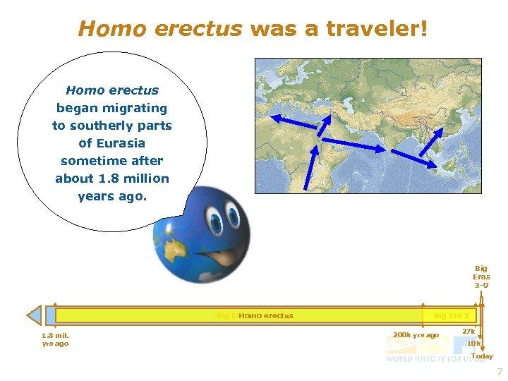 Homo erectus was a traveler! Homo erectus began migrating to southerly parts of Eurasia