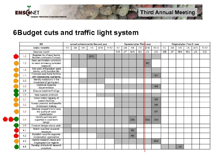Third Annual Meeting 6 Budget cuts and traffic light system