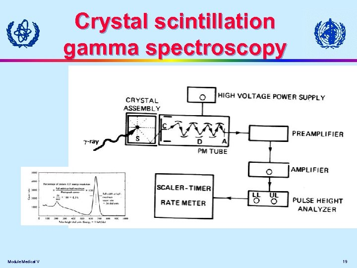 Crystal scintillation gamma spectroscopy Module Medical V 19