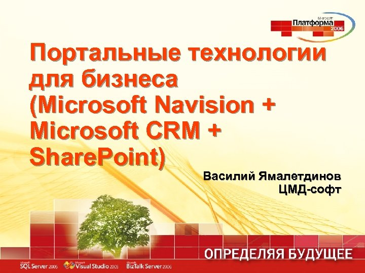 Портальные технологии для бизнеса (Microsoft Navision + Microsoft CRM + Share. Point) Василий Ямалетдинов