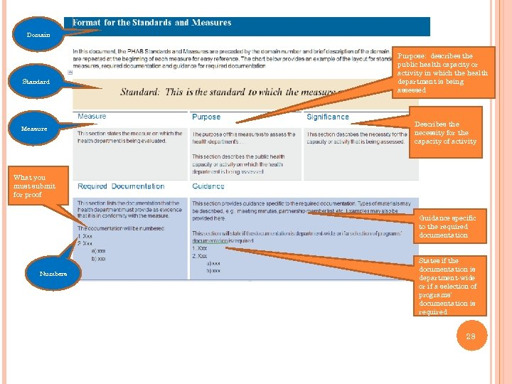 Domain Standard Measure Purpose: describes the public health capacity or activity in which the