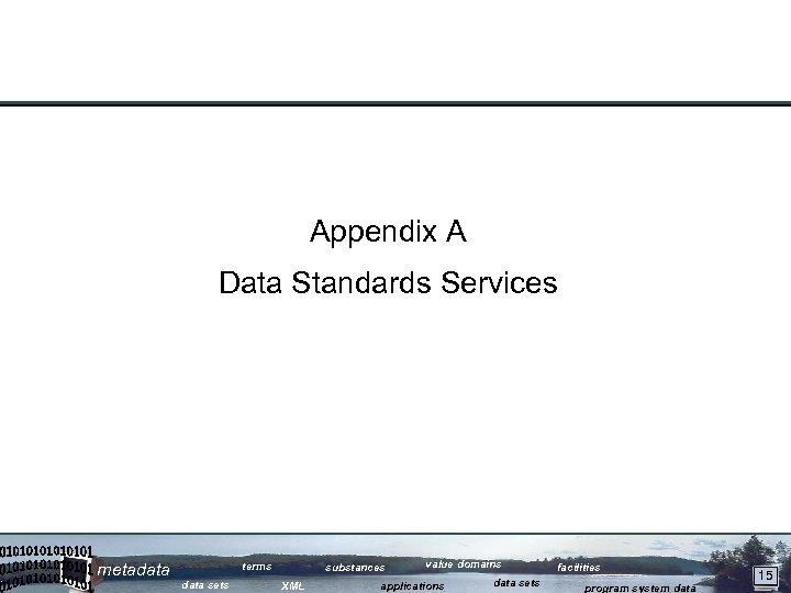 Appendix A Data Standards Services metadata terms data sets substances XML value domains applications