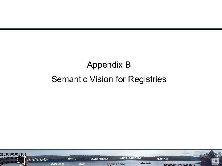 Appendix B Semantic Vision for Registries metadata terms data sets substances XML value domains