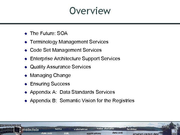 Overview ¿ The Future: SOA ¿ Terminology Management Services ¿ Code Set Management Services