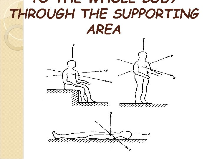 TO THE WHOLE BODY THROUGH THE SUPPORTING AREA