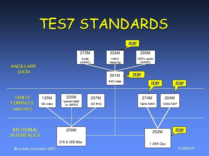 TES 7 STANDARDS TES 7 272 M 299 M Audio (HANC) ANCILLARY DATA 334