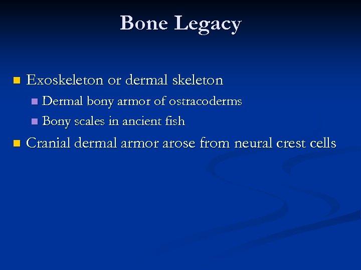 Bone Legacy n Exoskeleton or dermal skeleton Dermal bony armor of ostracoderms n Bony